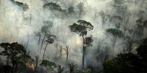 Bresil: les feux de foret en amazonie en hausse de 30% en 2019